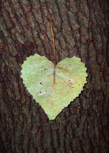 """Tree Heart"" by ~The-Dancing-Queen on DeviantArt"