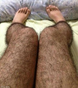 Hairy leg stockings