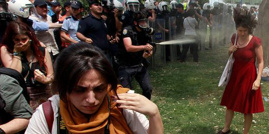 There are countless photos that depict much more graphic police brutality during the Gezi Park protests