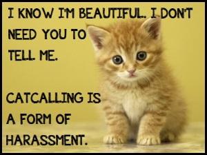 Cats Against Catcalling Dot Tumblr Dot Com