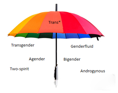"umbrella labeled ""trans*"" underneath are the words: trangender, agender, two-spirit, genderfluid, bigender, androgynous"